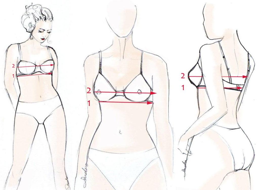 46c4fd90d5e13d Kolejnym krokiem do określenia rozmiaru piersi jest zmierzenie obwodu  biustu. Miarka w tym przypadku powinna przylegać w najszerszym jego  miejscu, ...